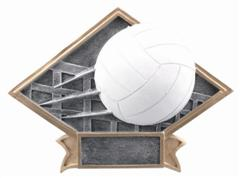 volleyball trophies resin plaque