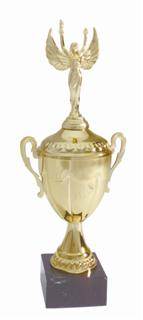 Metal award cups