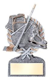 display hockey trophy