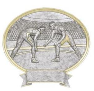 wrestling trophy plaque